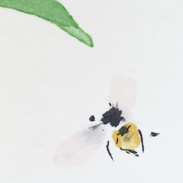 japan,art,seihou takeuchi,bee