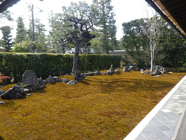 kyoto, daitokuji, garden