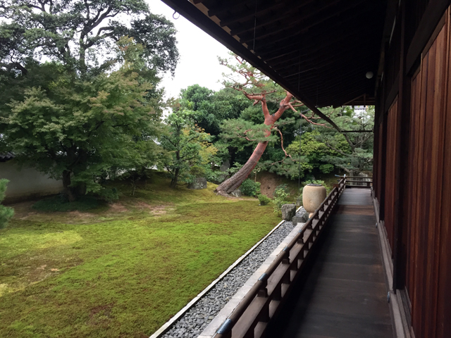 kyoto, temple, shokoku-ji