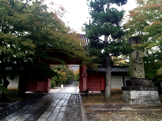 kyoto, temple, shinnyodou