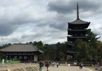 nara, kofukuji, kofuku-ji temple, ashura