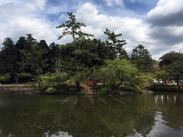 nara, todaiji, todai-ji temple